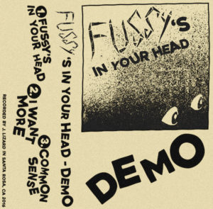 fussy demo artwork